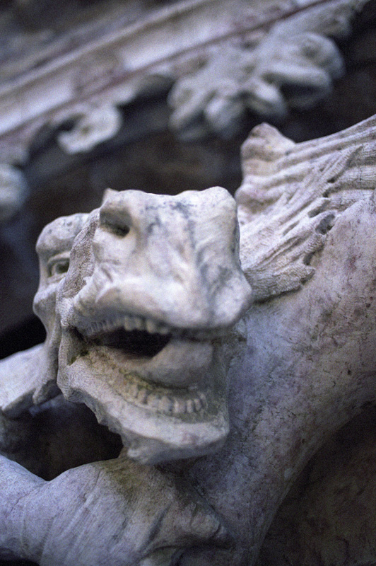 dragon detail two